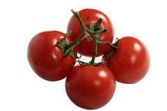 Tomato. Health nutrition for red tomatoes Stock Photos