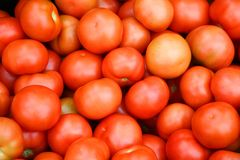 Tomato Royalty Free Stock Image