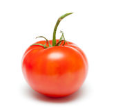 Tomato. Red fresh tomato on isolated white background Royalty Free Stock Photo