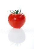 Tomato. Fresh tomato on a white background royalty free stock image