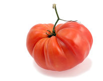 Tomato. Big red tomato isolated with shadow royalty free stock photo