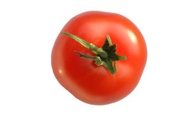 Tomato. Isolated royalty free stock image