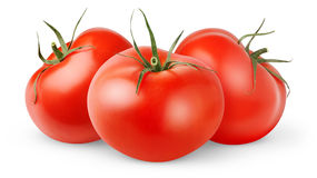 Three isolated tomatoes Stock Photography