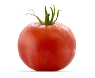 Free Tomato 2 Stock Photography - 15675362