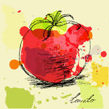 Tomato Stock Photos