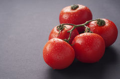 Tomato. Fresh red tomato with gray background Royalty Free Stock Photography