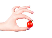 Tomato. Woman hand with cherry tomato Royalty Free Stock Photo