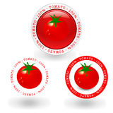 Tomato. Red tomatoes frame illustration of 100 Royalty Free Illustration