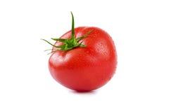 Tomato. Red Tomato  On White Backgrounds Stock Photo