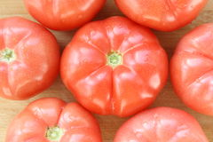 Tomato. Fresh red organic tomatoes background Stock Images