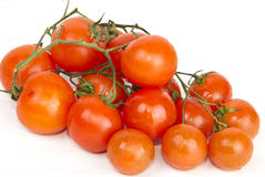 Tomato. Red tomato in the white background Royalty Free Stock Image