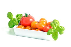 Tomato Stock Photography