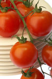 Tomato. Es on plates. Close up of red ´s stock photography