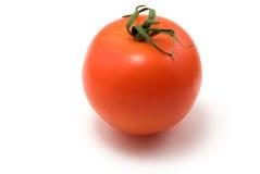 Tomato. One tomato isolated on white background royalty free stock photography