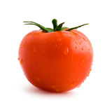 Tomato. A wet tomato viewed from side (profile) with its leaves Royalty Free Stock Photography