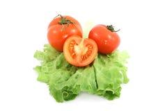 Tomato Royalty Free Stock Photography
