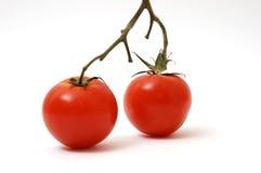 Tomato. Photo of a fresh tomato royalty free stock images