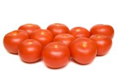tomato Στοκ Εικόνες