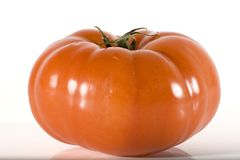Tomato. On high key background with copy space Royalty Free Stock Image