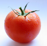 Tomato. A tomato is on a white background Stock Images