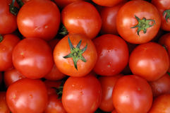 Tomato. Small and red tomato background Stock Images