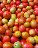 Tomato. Group of tomatoes in market Royalty Free Stock Image