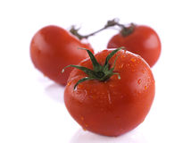 Tomato Royalty Free Stock Images