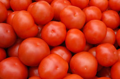 Tomato. Background royalty free stock photo