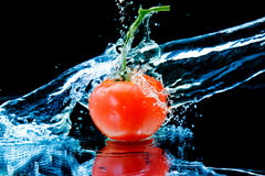 Tomato And Splash Water Stock Images