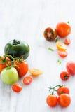 Tomato arrangement Stock Photography