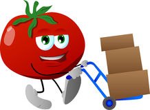 Tomato as delivery man Royalty Free Stock Photos
