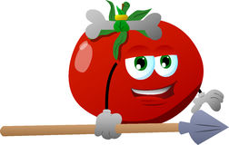 Tomato as native holding a spear Royalty Free Stock Photo