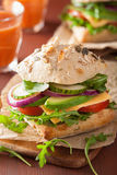 Tomato avocado cheese sandwich with cucumber onion Stock Photos