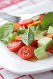 Tomato and Avocado salad Royalty Free Stock Images