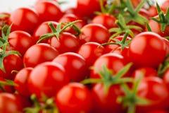 Tomato background Stock Photos