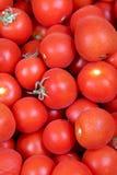 Tomato background Stock Images