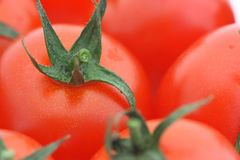 Tomato background. Close-up of tomato cutting in a heap of tomatoes. Shallow DOF Royalty Free Stock Image