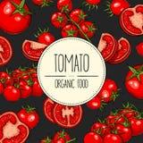 Tomato banner Royalty Free Stock Photos