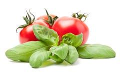 Tomato / basil Stock Images