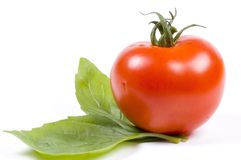 Tomato and basil. The backbone of the Italian kitchen stock photography