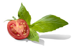 Tomato basil Royalty Free Stock Photos