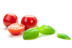 TOMATO & BASIL. Fresh tomatoes and basil on a white background Royalty Free Stock Photography