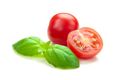 TOMATO & BASIL. Fresh tomatoes and basil on a white background Stock Photography