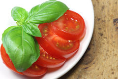 Tomato with basil Stock Photography