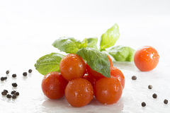 Tomato and basil. Fresh tomatoes, green basil and black pepper Stock Photos