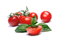 Tomato & Basil. Halved Cherry Tomato & Basil leaf. More tomatoes on background Royalty Free Stock Image