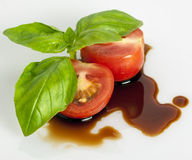 Tomato, basil and balsamic wine Stock Photography