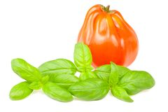 Tomato and basil Stock Photography
