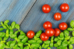 Tomato basil garden wood Royalty Free Stock Photo