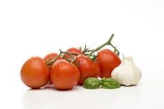 Tomato basil and garlic Royalty Free Stock Photography